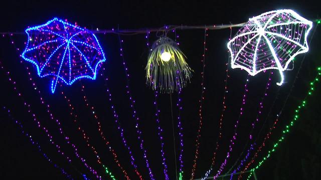 Lễ hội ánh sáng lần đầu xuất hiện tại Đà Lạt - Ảnh 2.