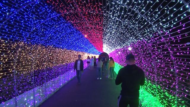 Lễ hội ánh sáng lần đầu xuất hiện tại Đà Lạt - Ảnh 6.
