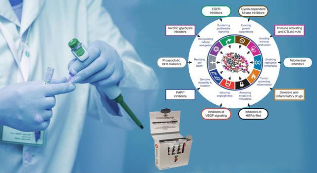 Thêm nghiên cứu về liệu pháp hỗ trợ ngăn ngừa, điều trị ung thư từ thiên nhiên - Ảnh 1.