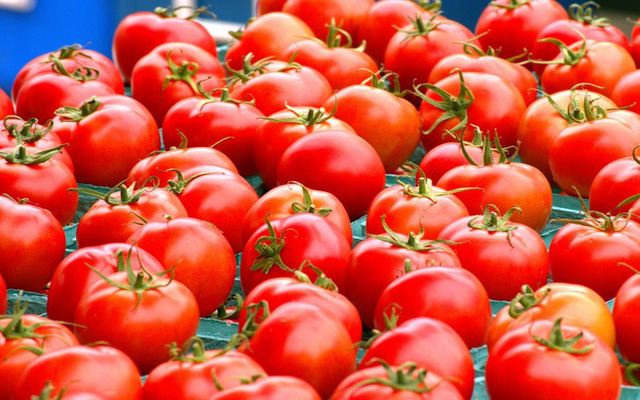 Chăm sóc da mùa Đông với 10 thực phẩm quen thuộc - ảnh 2