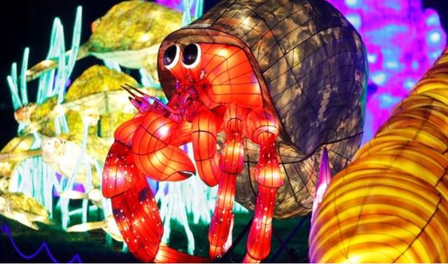 Rực rỡ sắc màu lễ hội ánh sáng nâng cao nhận thức bảo vệ biển - Ảnh 1.