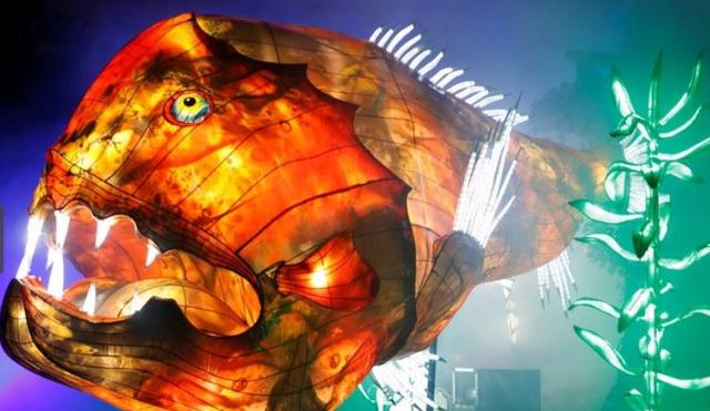 Rực rỡ sắc màu lễ hội ánh sáng nâng cao nhận thức bảo vệ biển - Ảnh 4.