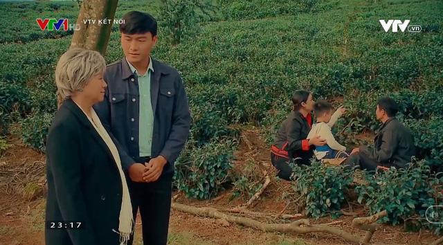 Nước mắt loài cỏ dại nối sóng Đánh cắp giấc mơ trên VTV3 từ 16/11 - ảnh 1