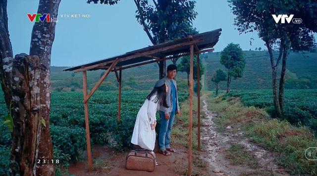 Nước mắt loài cỏ dại nối sóng Đánh cắp giấc mơ trên VTV3 từ 16/11 - ảnh 2