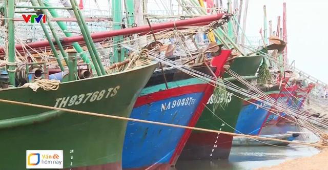 Tàu cá nằm bờ, ngư dân sốt ruột chờ bảo hiểm để ra khơi - Ảnh 1.