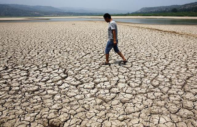 Biến đổi khí hậu có nên được ghi là nguyên nhân tử vong? - Ảnh 3.