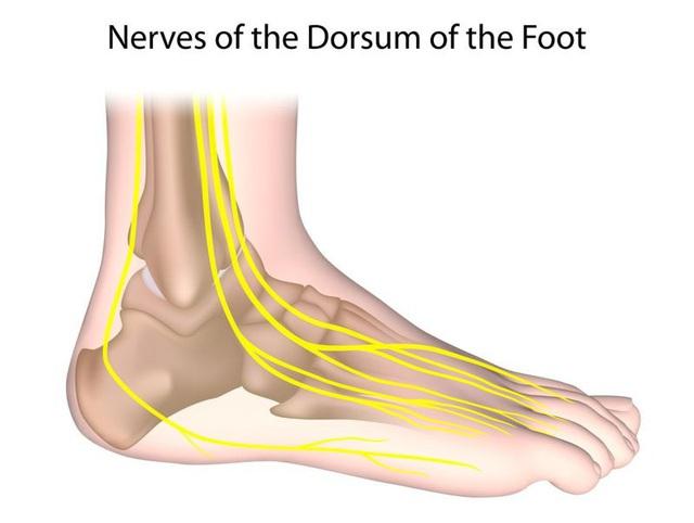 Những nguyên nhân khiến bàn chân bị lạnh - Ảnh 3.