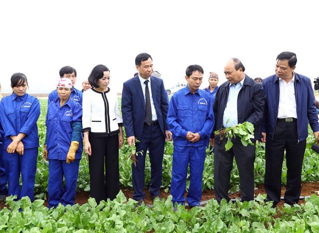 Thủ tướng: Nông nghiệp là đòn bẩy giúp Việt Nam hoàn thành mục tiêu kép - Ảnh 1.
