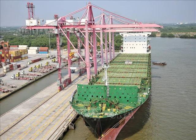 Đón tàu hàng 40.000 tấn cập cảng TP.HCM - ảnh 1