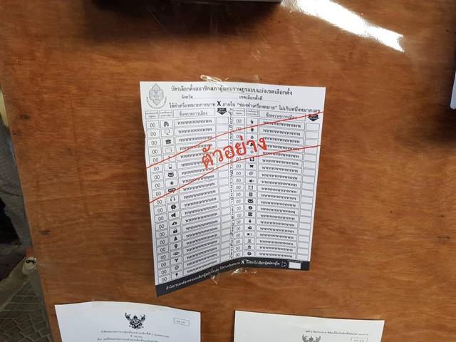 Ảnh: Người dân Thái Lan xếp hàng đi bỏ phiếu bầu Tổng tuyển cử 2019 - Ảnh 7.