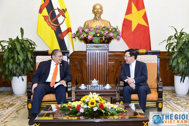 Phó Thủ tướng Phạm Bình Minh tiếp Bộ trưởng Bộ Ngoại giao Brunei - Ảnh 1.