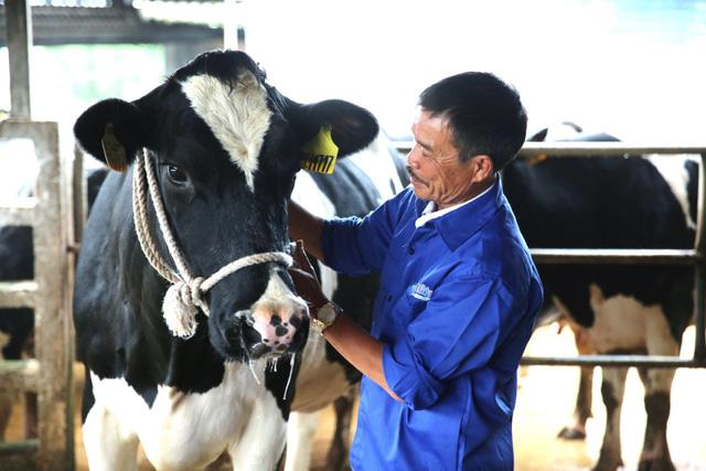 Khám phá từ điển thành công của Mộc Châu Milk - Ảnh 1.