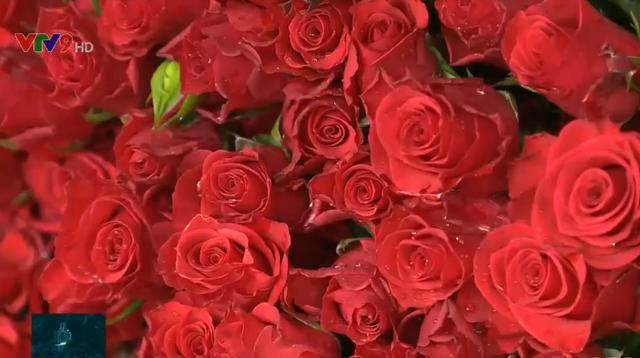 Những loài hoa mang may mắn và tài lộc trong ngày lễ Vu Lan - Ảnh 3.