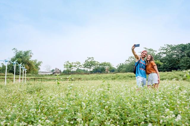 Chiêm ngưỡng hoa tam giác mạch trái mùa rực rỡ giữa lòng Hà Nội - Ảnh 8.