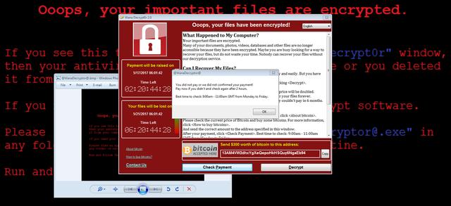 Người hùng giải cứu thế giới khỏi WannaCry đối mặt bản án 10 năm tù vì phát tán mã độc nguy hiểm hơn? - Ảnh 2.