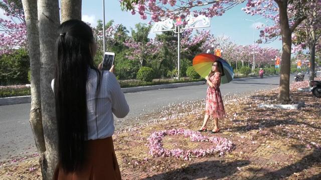 Ngập tràn sắc hoa kèn hồng tại TP.HCM - Ảnh 4.