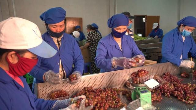 Quý I/2019, xuất khẩu nông, lâm, thủy sản của Việt Nam giảm gần 3% - Ảnh 1.