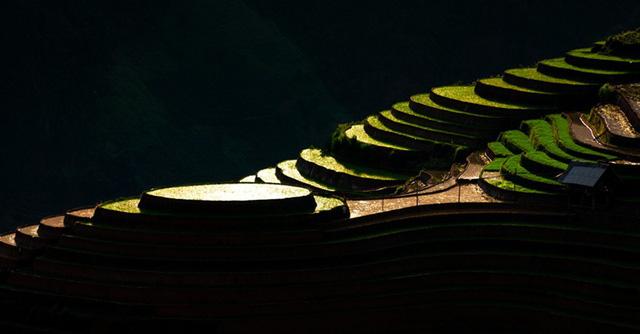 Ruộng bậc thang Mù Cang Chải mùa nước đổ qua góc máy của nghệ sỹ trẻ - Ảnh 11.