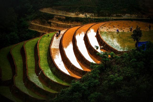 Ruộng bậc thang Mù Cang Chải mùa nước đổ qua góc máy của nghệ sỹ trẻ - Ảnh 7.
