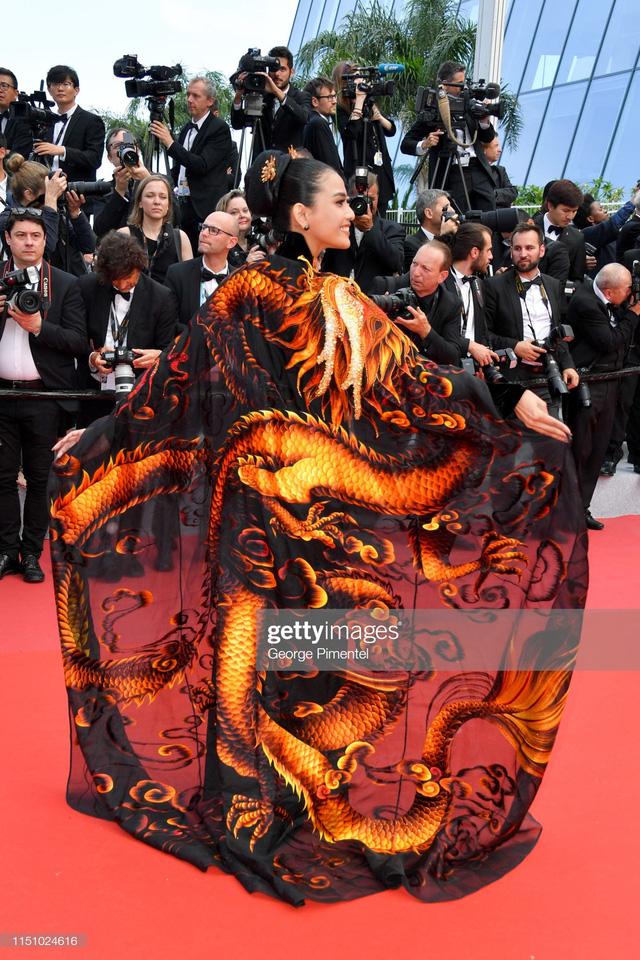 Trương Thị May diện áo dài lộng lẫy trên thảm đỏ Cannes 2019 - Ảnh 8.