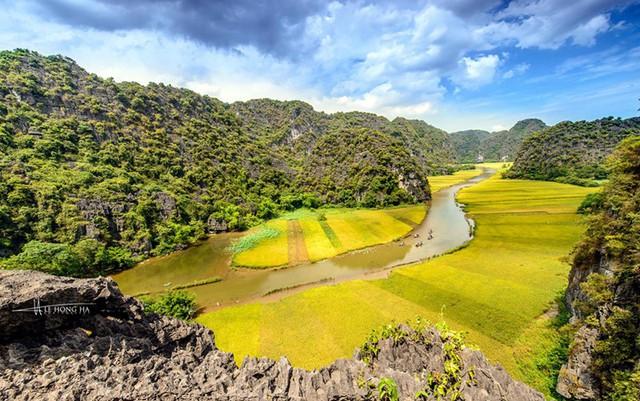 Ngắm mùa vàng Tam Cốc từ đỉnh Hang Múa - ảnh 1