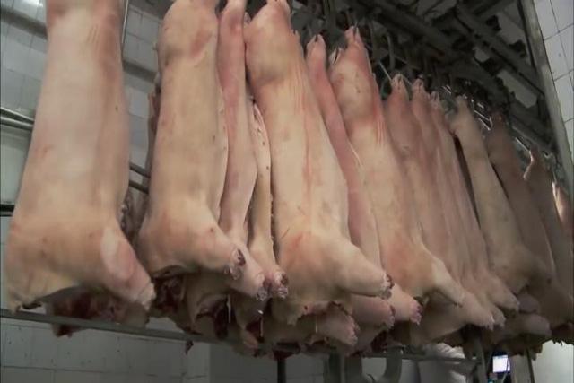 Trung Quốc xác nhận ngừng nhập thịt lợn từ Mỹ - Ảnh 1.