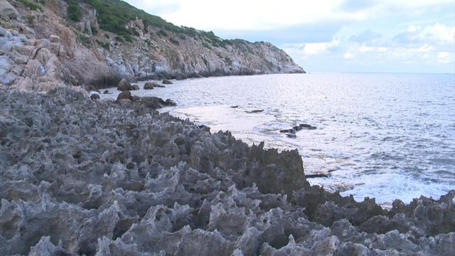 Khám phá bãi san hô cổ ở Hang Rái, Ninh Thuận - Ảnh 1.
