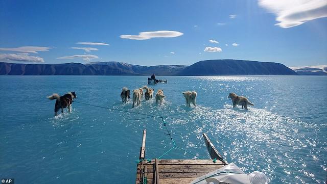 Bức ảnh lột tả hiện trạng băng tuyết tại Greenland gần đây - Ảnh 1.