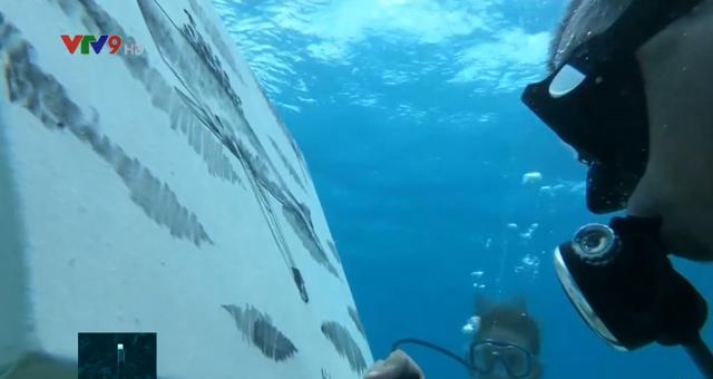 Vẽ tranh ở độ sâu 6m dưới mặt nước biển - Ảnh 1.