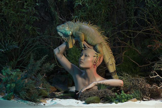Những bức hình ấn tượng qua 8 mùa Vietnams Next Top Model - Ảnh 15.