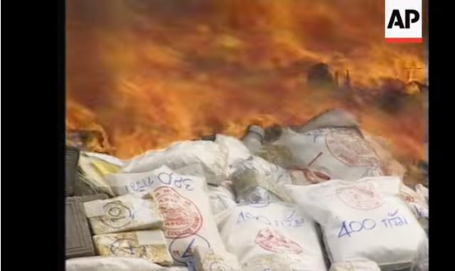 Thái Lan tiêu hủy ma túy nhân Ngày Thế giới phòng chống ma túy - Ảnh 2.