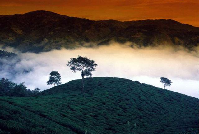 Vẻ đẹp ít người biết tới ở vùng đất kỳ lạ nhất thế giới - Ảnh 8.