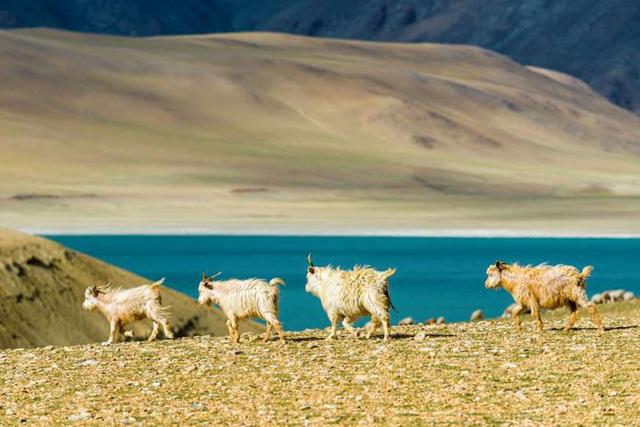 Vẻ đẹp ít người biết tới ở vùng đất kỳ lạ nhất thế giới - Ảnh 10.