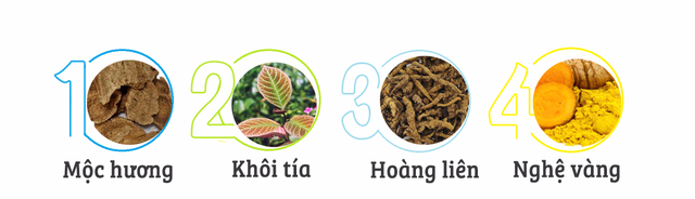 """TPBVSK Dạ Tràng An Khang - """"Khắc tinh"""" của viêm loét dạ dày - Ảnh 3."""