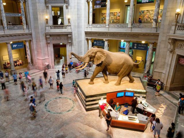 Top 15 bảo tàng nổi tiếng nhất thế giới - Ảnh 11.