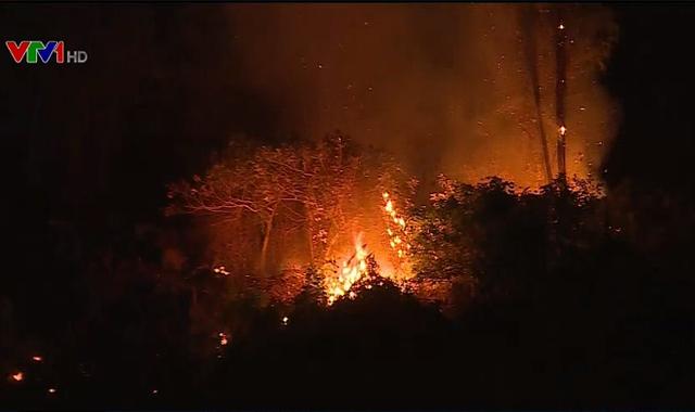 Liên tiếp xảy ra cháy rừng tại miền Trung - Ảnh 1.