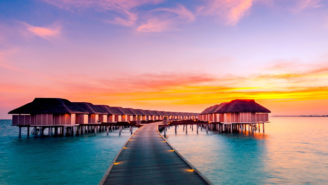 Ăn Hảo Hảo, dạo đảo Maldives cùng Hoài Linh và Tóc Tiên ngay hôm nay - Ảnh 2.