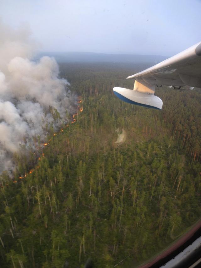 Cháy rừng tiếp tục lan rộng tại Siberia - Ảnh 1.