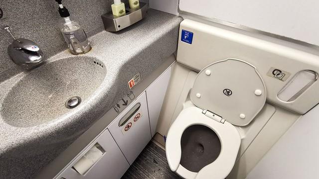 Lén đặt máy quay trong nhà vệ sinh trên máy bay, người đàn ông Malaysia bị bắt - Ảnh 1.