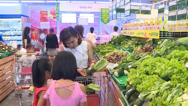 Thừa Thiên - Huế lan tỏa cuộc chiến chống rác thải nhựa - Ảnh 2.