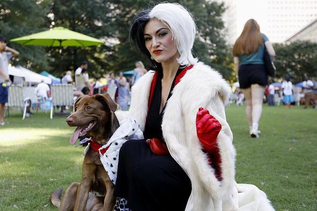 Thú vị sự kiện cosplay cho thú cưng - Ảnh 2.
