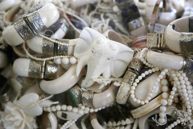 Kenya liên tục xử phạt du khách mang trang sức ngà voi - Ảnh 1.