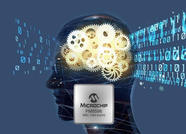 Microchip gia nhập thị trường cơ sở hạ tầng bộ nhớ - Ảnh 1.
