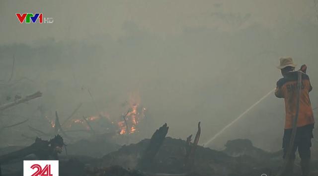 Cháy rừng dữ dội tại Indonesia, nhiều nước Đông Nam Á bị ảnh hưởng - Ảnh 1.