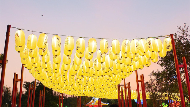 Mở cửa vườn Nhật Bản quy mô lớn nhất Đông Nam Á tại Hà Nội - Ảnh 2.