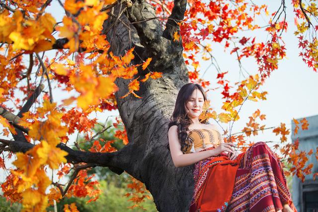 Ngắm hàng cây phong lá đỏ lãng mạn như trong phim Hàn tại Hà Nội - Ảnh 11.