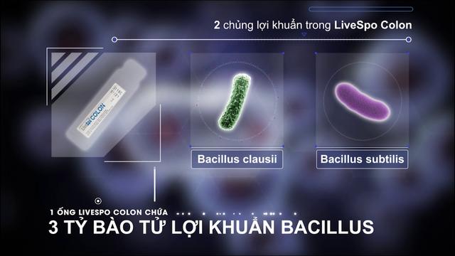 Bào tử lợi khuẩn Dr. ANH mở ra hướng đi mới trong việc bảo vệ sức khỏe đường tiêu hóa - Ảnh 3.