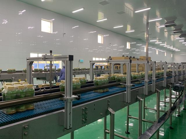 Công ty TNHH Long Hải ra mắt 2 sản phẩm nước rong biển ép - Ảnh 3.