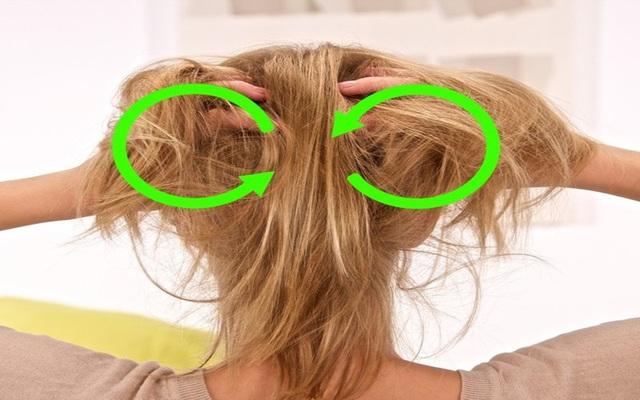 Mẹo dưỡng tóc đơn giản tại nhà - ảnh 5