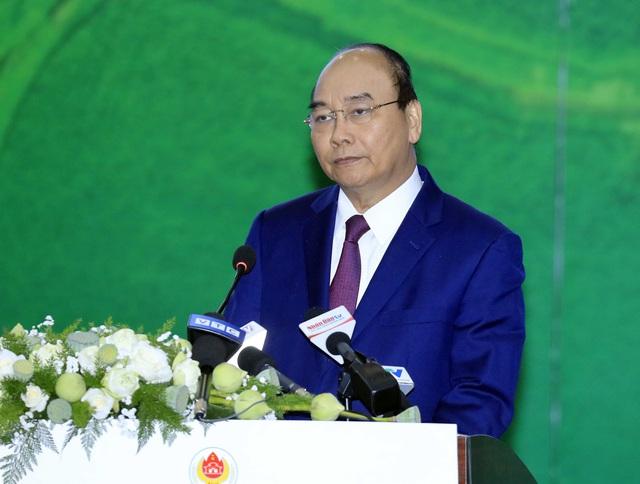 Thủ tướng Nguyễn Xuân Phúc: Trà Vinh có làm nên kỳ tích sông Tiền, sông Hậu hay không? - Ảnh 1.